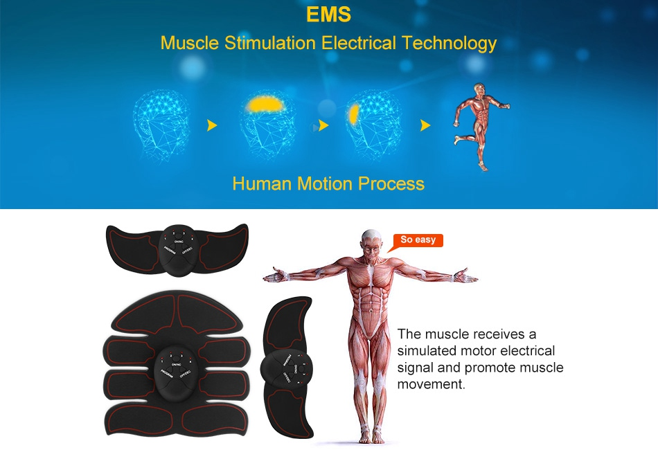 simulation of abs The ultimate abs stimulator is the most powerful and effective 6 pack solution on the market that effortlessly strips away your abdominal fat to finally show of your toned abs thank's to advanced ems technology, which is currently being used in massage, acupuncture, tapping, and more by the leading experts.